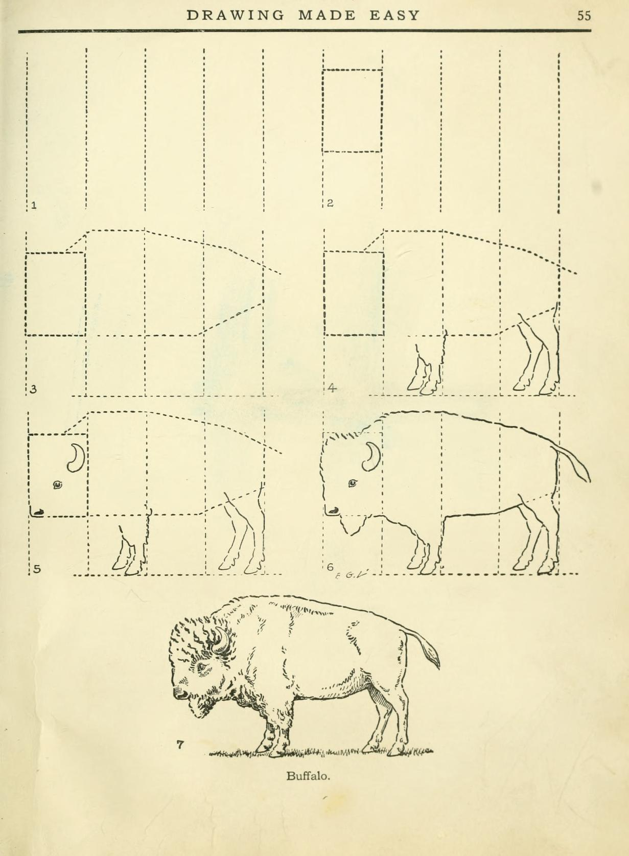 DRAWING MADE EASY HOW TO DRAW A BUFFALO