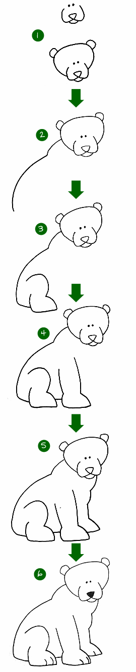 LEARN HOW TO DRAW A BEAR