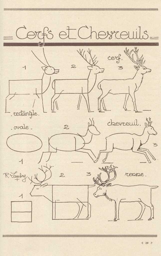 LEARN HOW TO DRAW A DEER