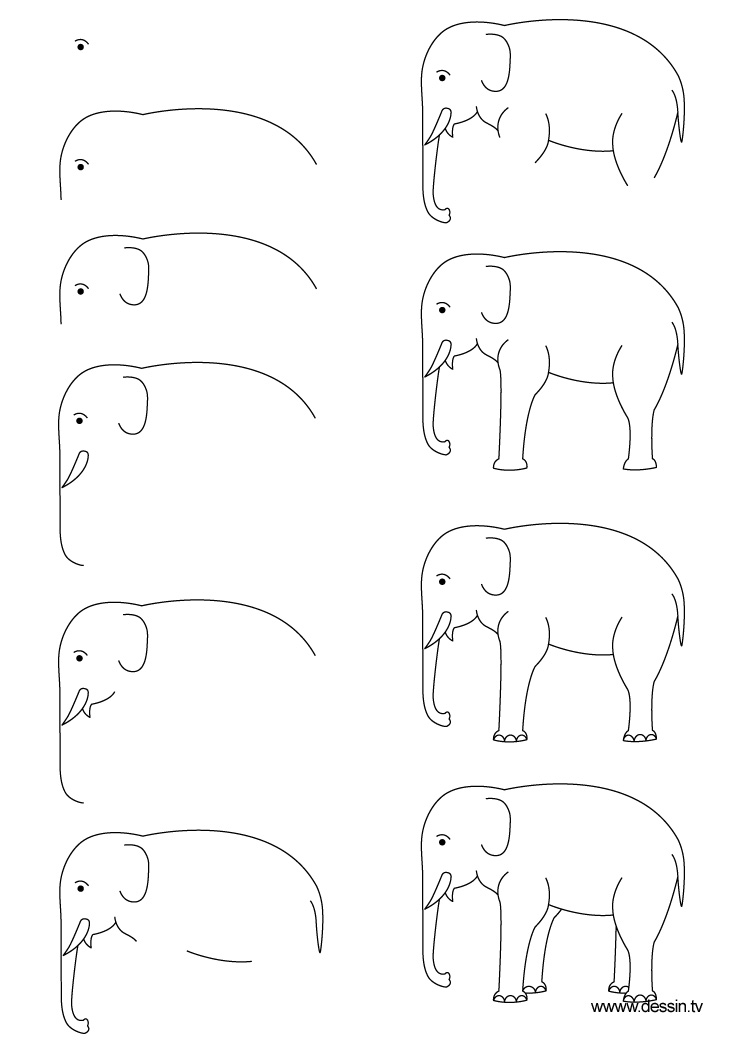 LEARN HOW TO DRAW AN ELEPHANT