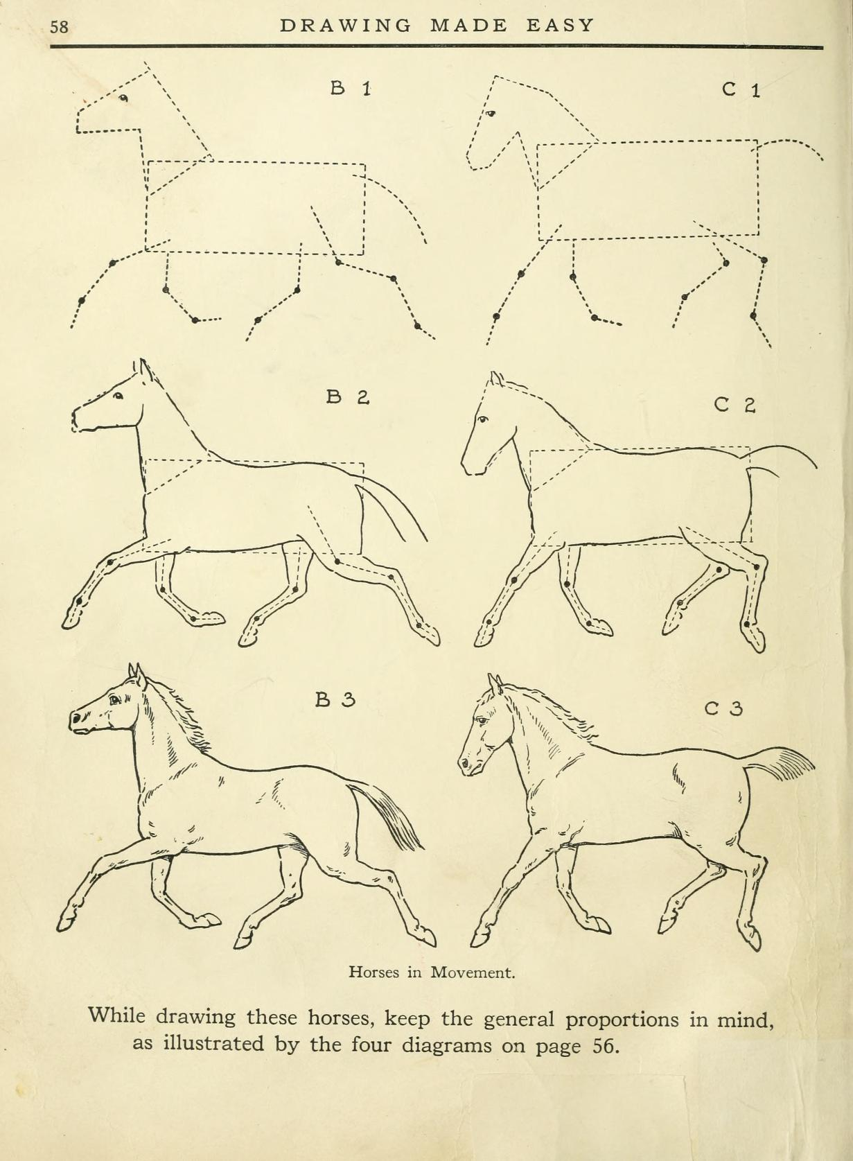 how to draw horses in movement
