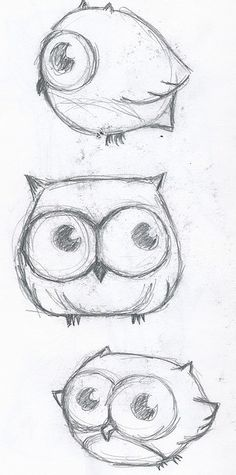 learn how drawl owls