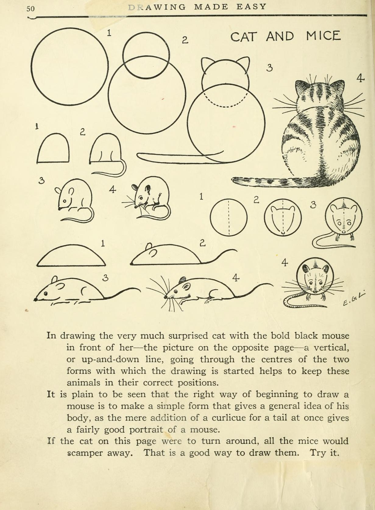 learn how to draw a cat and mice
