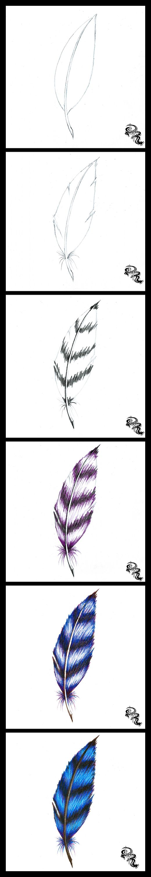 learn how to draw a feather