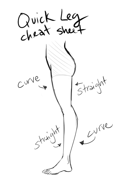 learn how to draw a leg
