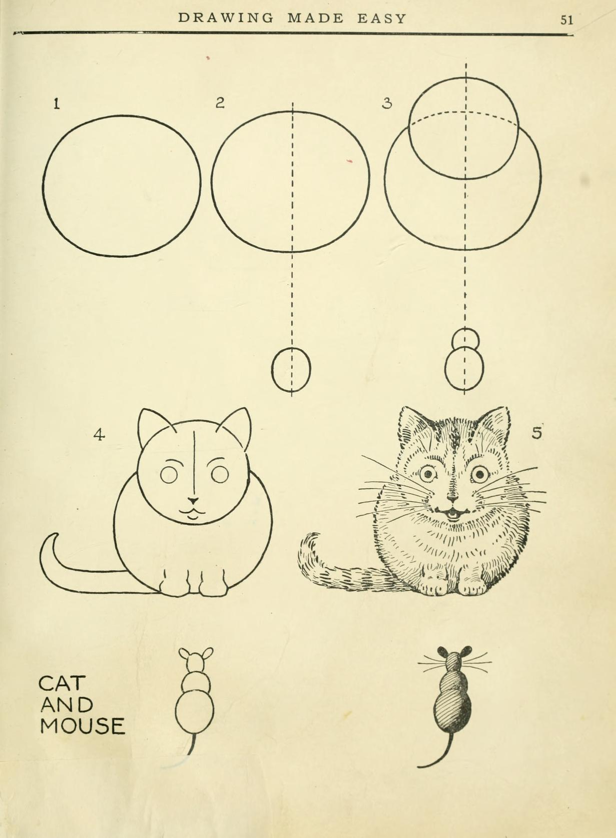 learn how to draw a mice and a cat