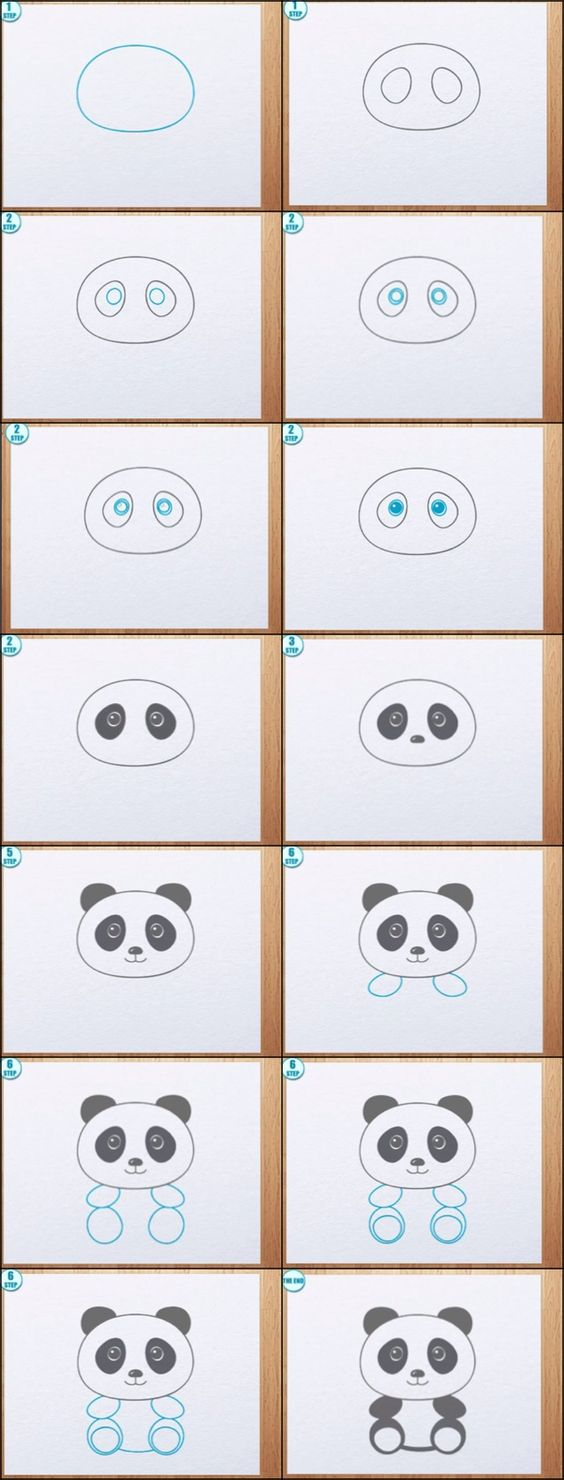 learn how to draw a panda bear