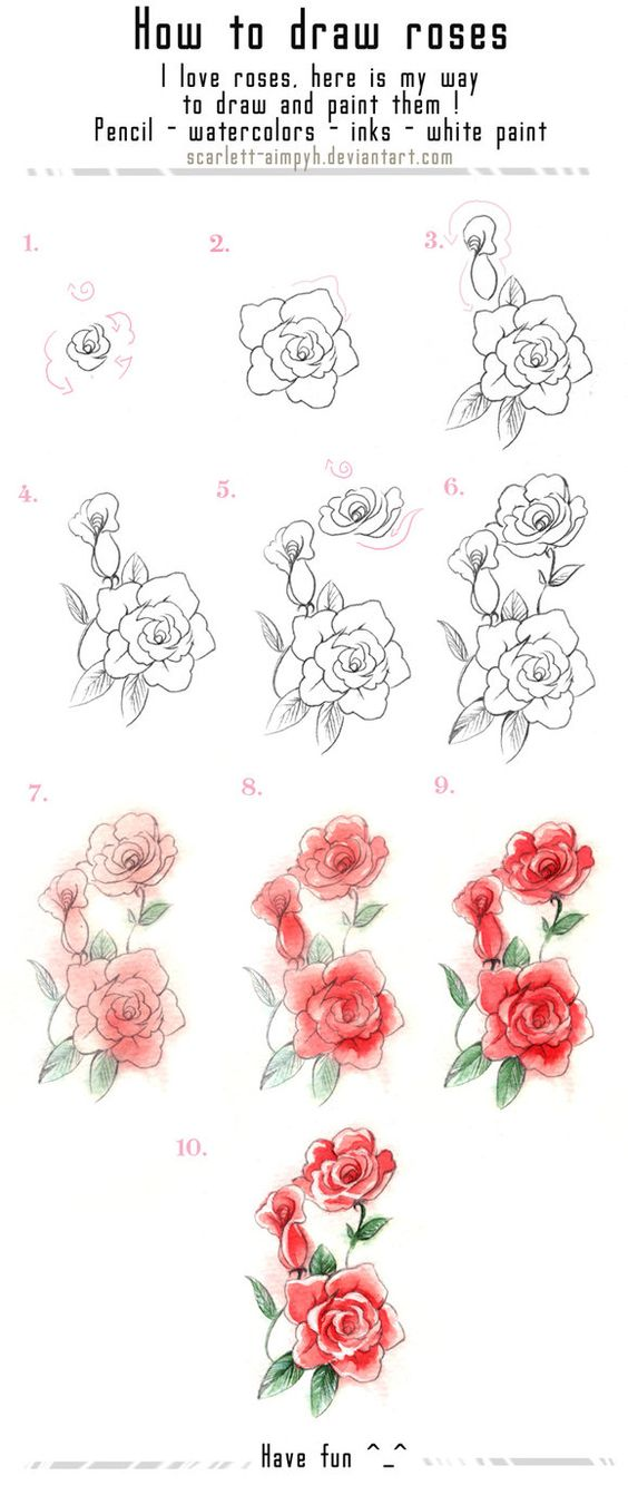 15 Tutorials That Will Help You Learn How to Draw Flowers