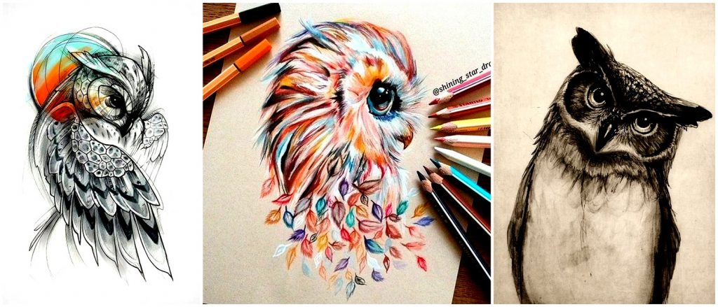 owl drawing ideas